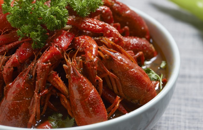 crayfish-1504081_1920